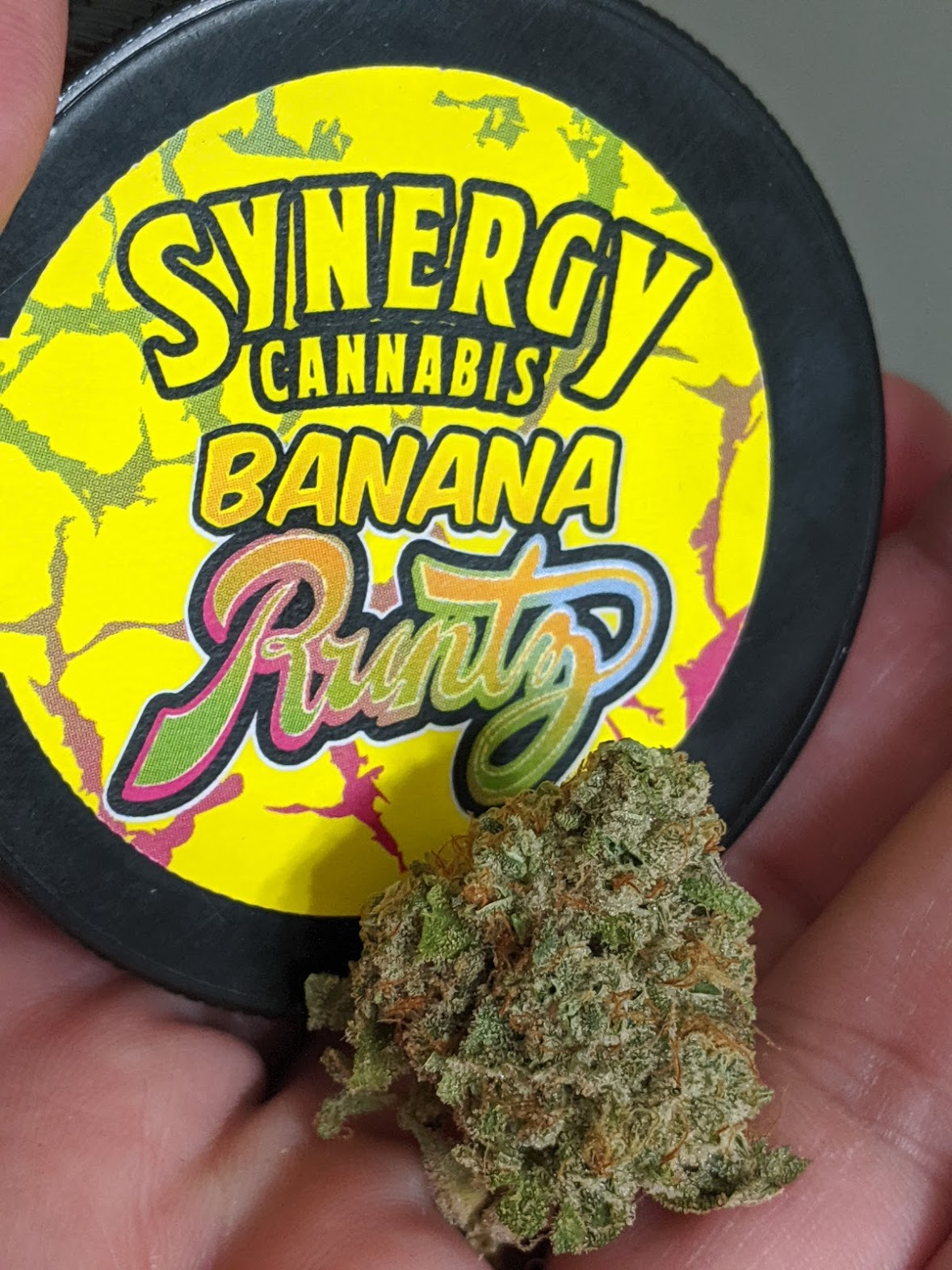 Banana Runtz From Syngery Cannabis